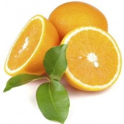 Eoné Pomeranč sladký 10ml