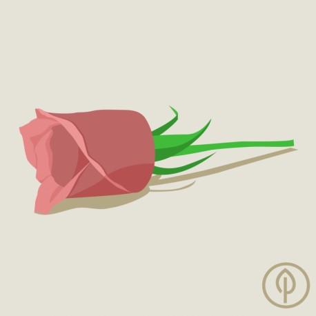 PUKKY - bylinný prášek Damašská růže 100g